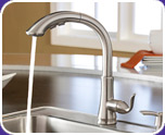 Pfister Avalon Faucets